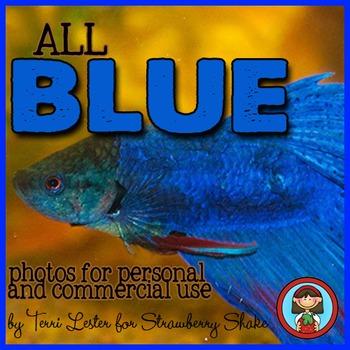 Photos Photographs BLUE Primary Color for Personal and Com