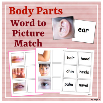 BODY PARTS Word to Picture Matching Activity