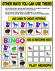 BROWN BEAR LITERACY ACTIVITIES- BINGO AND MATCHING MATS
