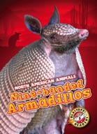 Nine-banded Armadillos