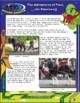 BYTES Power Smarts: Pixel, the Stowaway #7 - Horses