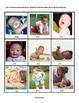 Babies Theme Unit