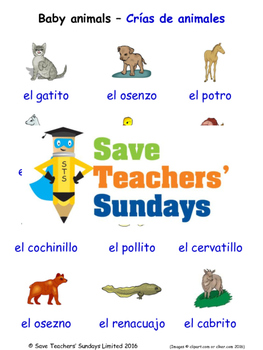 Baby Animals in Spanish Worksheets, Games, Activities and