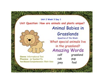 Baby Animals in the Grassland Flipchart Days 1-5