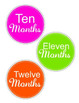 Baby Monthly Stickers