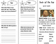 Back of the Bus Trifold - ReadyGen 2016 3rd Grade Unit 4 Module A
