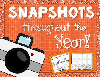 Snapshots Throughout the Year (End of Year or Throughout Y