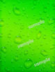 Backgrounds / Digital Papers: Rain / Water Drop