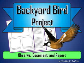 Backyard Bird Project