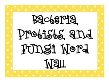Bacteria, Protists, and Fungi Word Wall