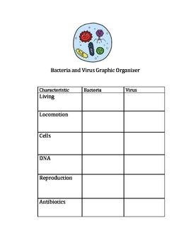 Bacteria and Virus Comparison Graphic Organizer with Teach