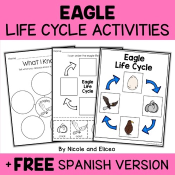 Bald Eagle Life Cycle Activity