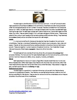 Bald Eagle - Review Article - Information Facts Questions