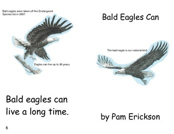 Bald Eagles Can- a non-fiction guided reading book
