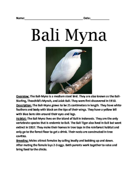 Bali Myna - Endangered Bird Lesson Article Questions Facts