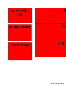 Basic Cell Vocabulary Password