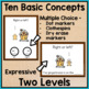 Basic Concepts Task Cards: Christmas (Autism and Special E