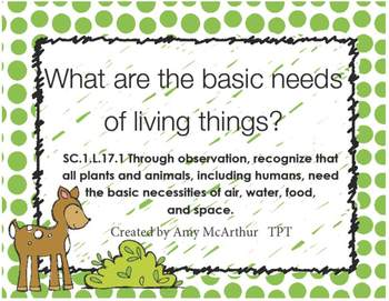 Basic Needs of Living Things SC.1.L.17.1