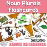 Basic Set Regular and Irregular Noun Plural Cards