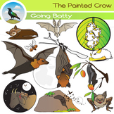 Bat Clip Art - Bat Ecology Set - 24 Piece - Color & Blackline