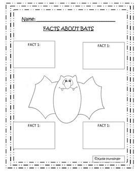 Bat Facts!