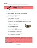 Bat Facts Handout