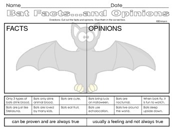 Bat Facts and Opinions