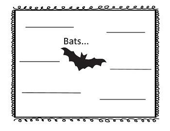 Bat Graphic Organizer