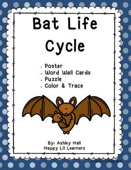 Bat Life Cycle Pack