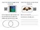 Bat Mini-Book - Using QR Codes to Explore Bats