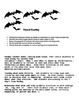 Bat Unit- Shared Reading and Interactive Read Aloud