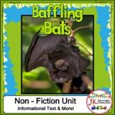 Bats! Non-fiction Unit 1st and 2nd Grade