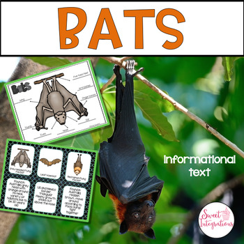 BATS - NONFICTION AND SCIENCE Research Activities With PowerPoint