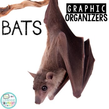 Bats Graphic Organizers: Fact Writing, Organizers, Nonfict