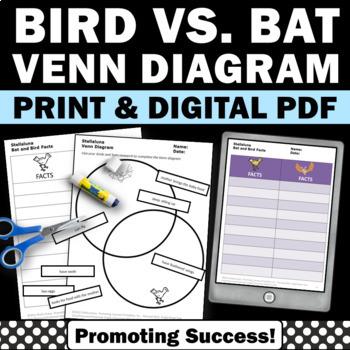 Bats vs. Birds Venn Diagram Worksheets Stellaluna Hallowee