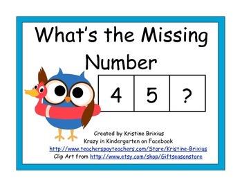Beach Owl Missing Numbers