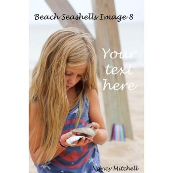 Beach Seashells Image 8