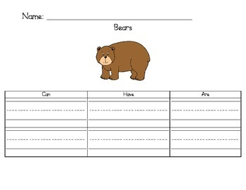 Bears - Can/Have/Are