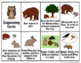 Bear's New Friend:  Speech & Language Activities