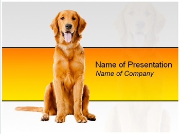 Beautiful Dog PPT Template for Pet Lovers