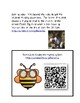 Bee Ready to Investigate   Bees 2-LS2-2 Polination Science