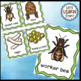 Bees Life Cycle, Bee Posters, Write the Room, Bee Themed W