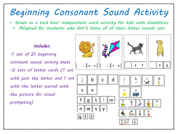 Beginning Consonant Sound Task Box/ Activity