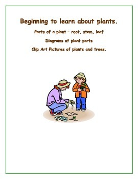 Beginning to learn about plants