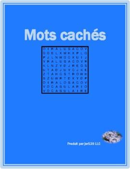 Bien Dit 1 Chapitre 3 Vocabulaire wordsearch