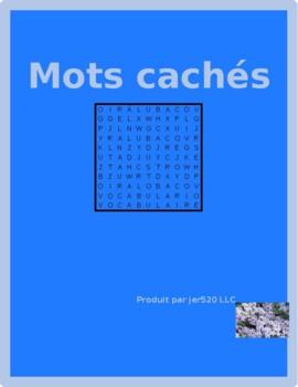 Bien Dit 1 Chapitre 8 Vocabulaire wordsearch