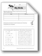 Big Birds (Thinking Skills)