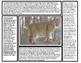 Big Cats Articles (Lion, Tiger, Cheetah, Jaguar, Leopard,