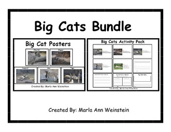 Big Cats Bundle