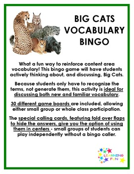 Big Cats Vocabulary Bingo
